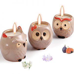 6Novelty Owl Candles