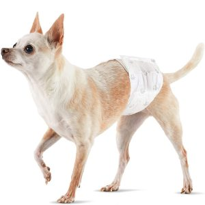 Male Dog Wrap, Disposable Diapers