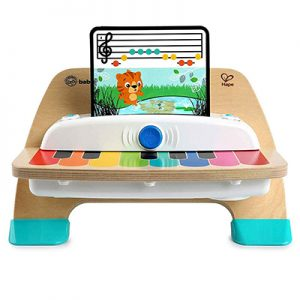 Wooden Musical Toy